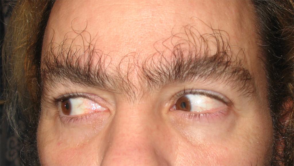 Eyebrows Long Hair