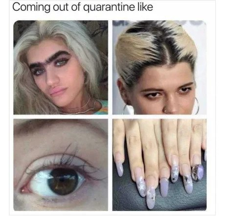 Girls Eyebrows After Quarantine Meme