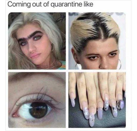 Girls Eyebrows During Quarantine Memes