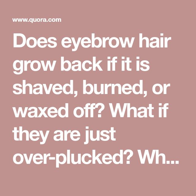View Do Eyebrows Grow Back After Shaving Images